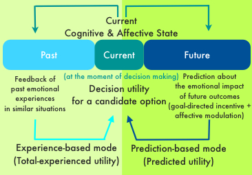 human decisions and machine predictions